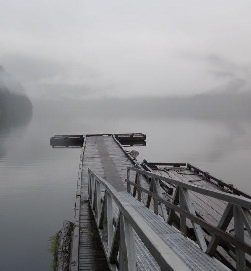 misty-dock.jpg